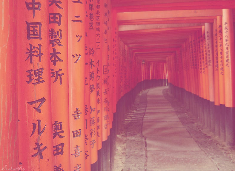 The red gates in Kyoto, Japan.