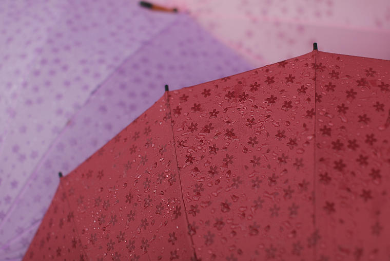 pretty cute and kawaii red purple and pink flowery umbrella parasols with raindrops