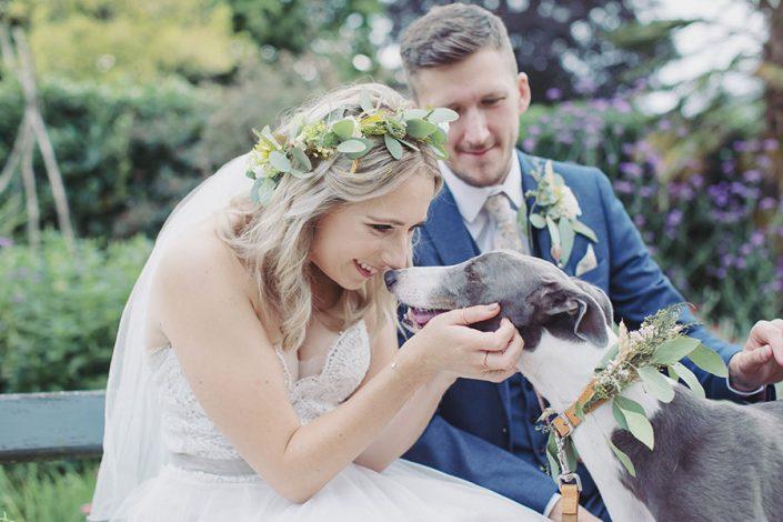 Sheffield Botanical Gardens wedding | Sheffield natural wedding photography | Yorkshire Sheffield wedding photographer | Outdoor garden wedding venue | Sasha Lee Photography | Greyhound dog at wedding