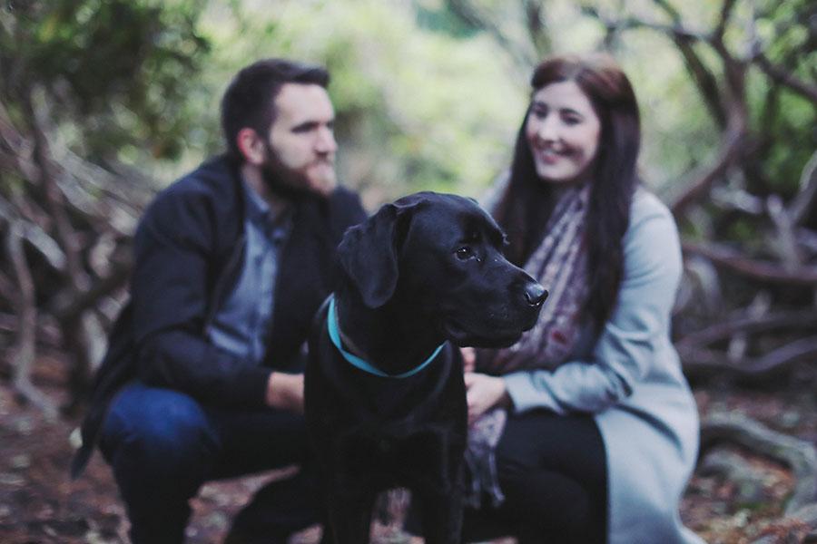 Stephanie & Jack ♡ Longshaw Estate, Peak District Engagement Photoshoot