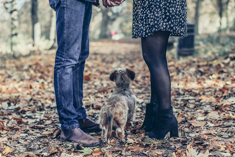 Clifton Park engagement photoshoot | Yorkshire pre-wedding photography | Sheffield engagement photographer | Autumn couple photos
