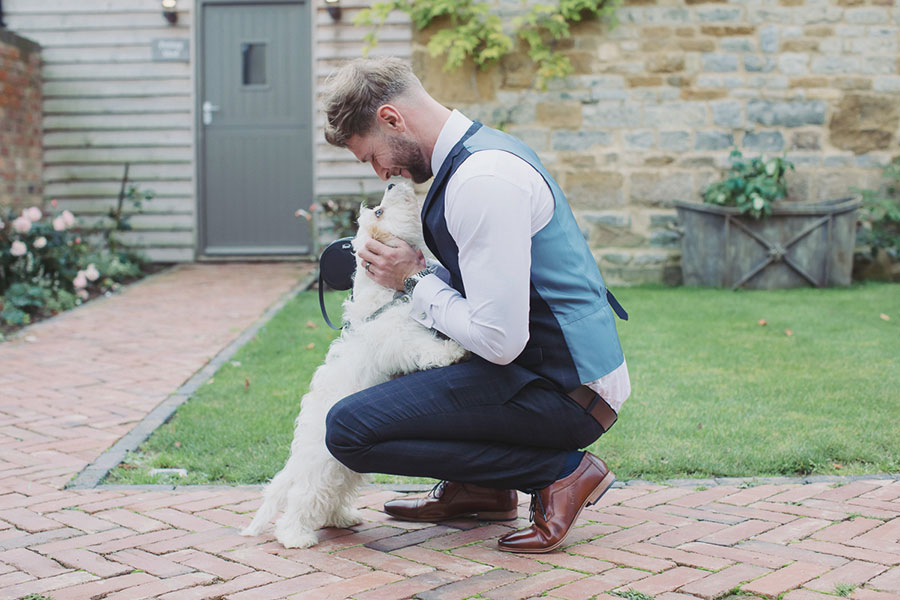 Dogs at Weddings 12