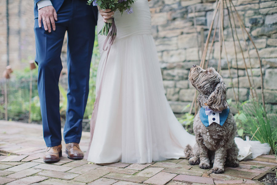 Dogs at Weddings 26