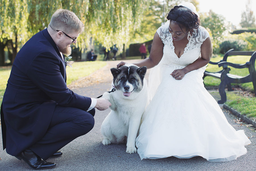 Dogs at Weddings 33