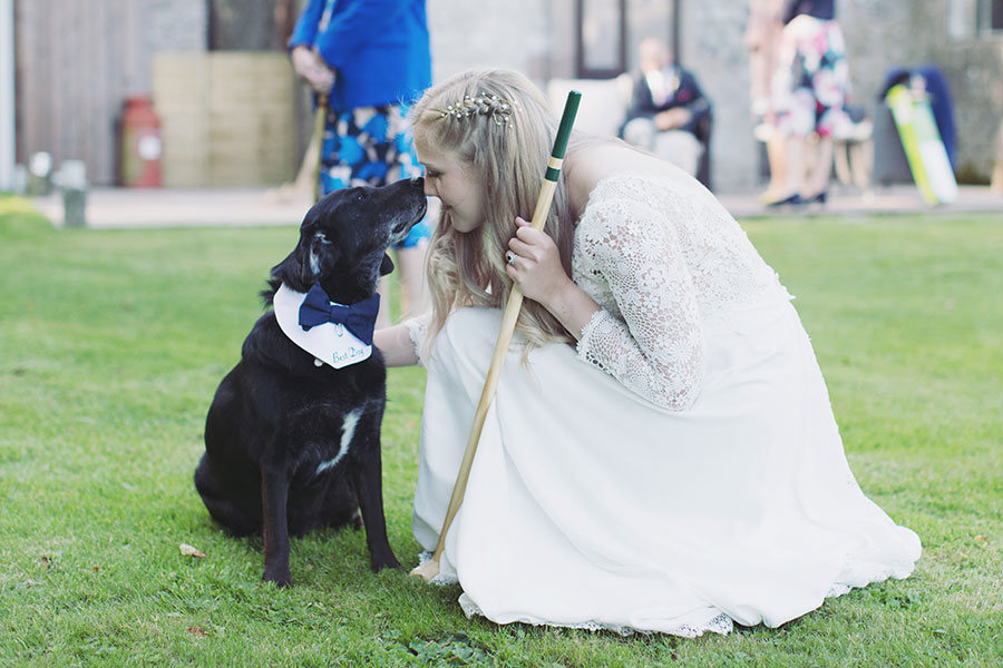 Dogs at Weddings 5