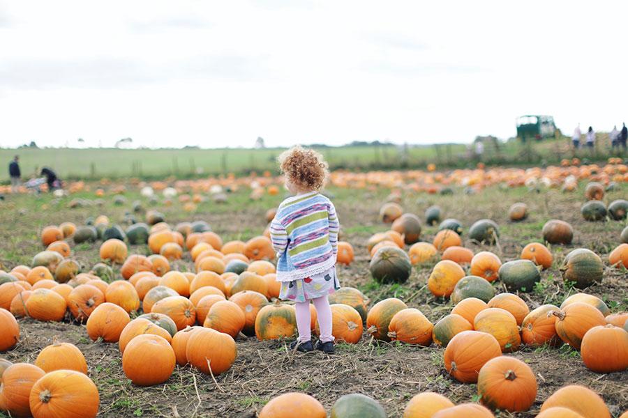Fun Engagement Shoot Ideas | Pumpkin patch